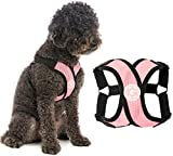 Gooby Comfort X Step in Harness - Pink, Medium - No Pull Small Dog Harness Patented Choke-Free X Frame - Perfect on The Go Dog Harness for Medium Dogs No Pull or Small Dogs for Indoor and Outdoor Use