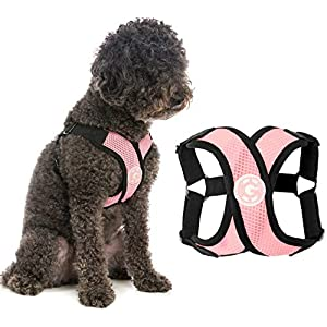 Gooby Dog Harness – Pink, Medium – Comfort X Step-in Small Dog Harness with Patented Choke-Free X Frame – Perfect on The Go No Pull Harness for Small Dogs or Cat Harness