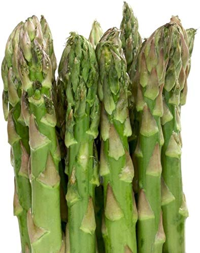 Asparagus Mary Washington Seeds for Planting 1 G, Non-GMO, American Seeds, Heirloom, Asparagus officinalis