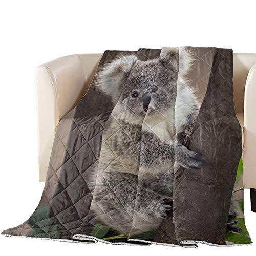 Possta Decor Down Alternative Reversible Comforter Cotton Fill Quilted Throw Blanket Cute Koala Bear Baby Lightweight Ultra Soft Bedding Set All Season Duvet Insert, Full Australia Animal