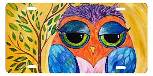 DQVWGK Colorful Owl Custom Aluminum License Plate Frames Cover For Car License Plate Cover With 4 Holes Car Tag 6'x12'