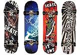 "General Packaging Skateboards for Beginners, 31"" Complete Skateboard for Kids Teens & Adults"
