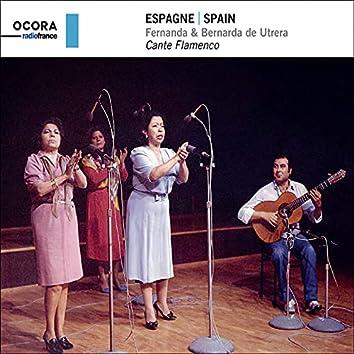 Espagne   Spain - Cante Flamenco
