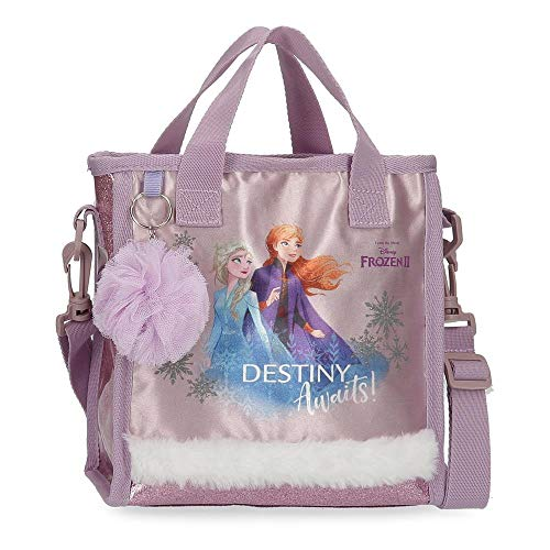 Estuche Frozen Destiny Awaits