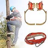 Ramponi Tree Climbing, Professionale Antiscivolo Ramponi per Alberi con Cintura di Sicurezza Impostato, Acciaio Inossidabile All'aperto Gli Sport Supplies,600model