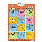 ShenyKan Kinder Audio Wandtafel Early Education Bildtafel mit Ton für 0-3 Jahre Baby Pinyin Bildkompetenz Lesen