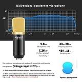 Zoom IMG-1 neewer microfono a condensatore nw