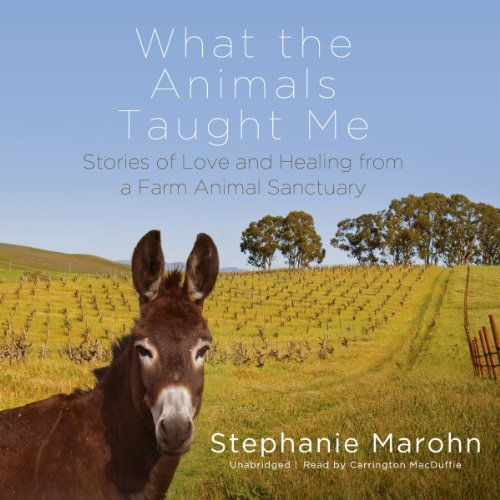 What the Animals Taught Me audiobook cover art