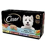 cesar senior 10+, cibo per cane anziano, selezione assortita, 150 g, 24 vaschette - 3600 g