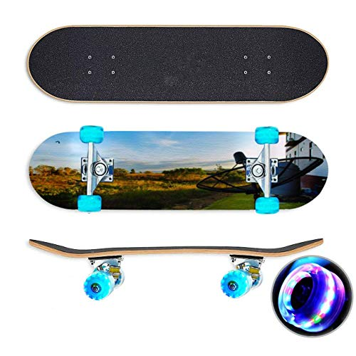 UYDBKSJABM Satellite Dish Skateboard Colorful Flashing Wheels Extreme Sports&Outdoors 31''Cruiser Complete Standard Longboard Beginners Kids Cool Boys Teen
