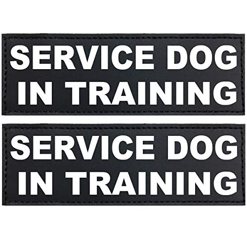 FML PET Customized Personalized Dog Patches with Hook Backing Custom Stickers ID Tags for Dog Vest Harnesses,Service Dog/in Training/Do Not Pet/Therapy Dog,etc. Set of 2