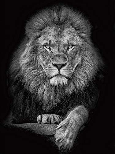 UIOLK Valiente conservación de la Vida Silvestre Arte de Pared de Animales Tigre León Ciervo Lienzo Carteles e Impresiones para la decoración del hogar de la Sala de Estar
