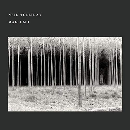 Neil Tolliday