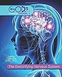 Electrifying Nervous System Student Book (God