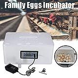 MYZZ 22 incubatrice per Uova, Uso Domestico incubatore con Controllo Digitale della Temperatura cova Uova Uovo di Anatra Uovo di Pollo pollame