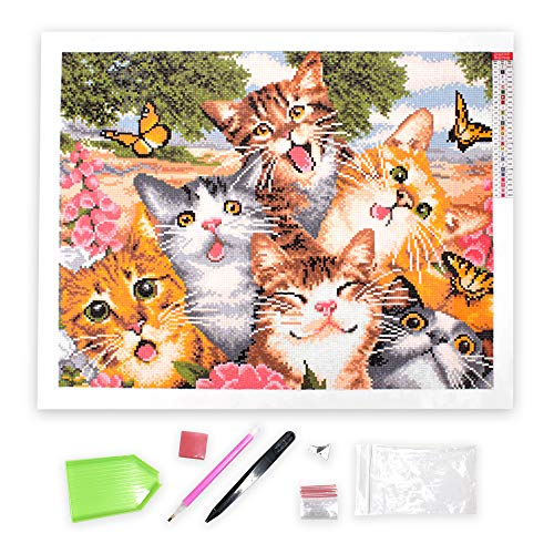 "Craftymint DIY Diamond Painting Kits for Adults and Kids - Full Drill 5D Dotz by Numbers Kit - Large 16x20"" Cute Cat Design - Helps Anxiety and Stress - Paintings Includes Art Tools and Accessories"