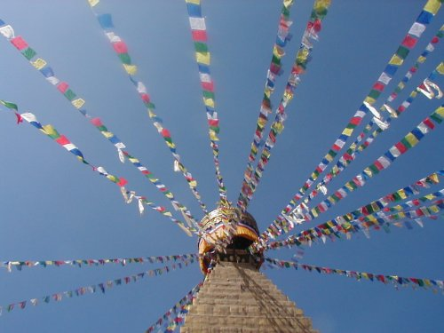Grandi Fairtrade tibetane Bandiere di preghiera sulla lunga serie - 25 flags - lunghezza della stringa complessiva di circa 680 centimetri, ognuna misure bandiera circa 25 cm per 16 centimetri