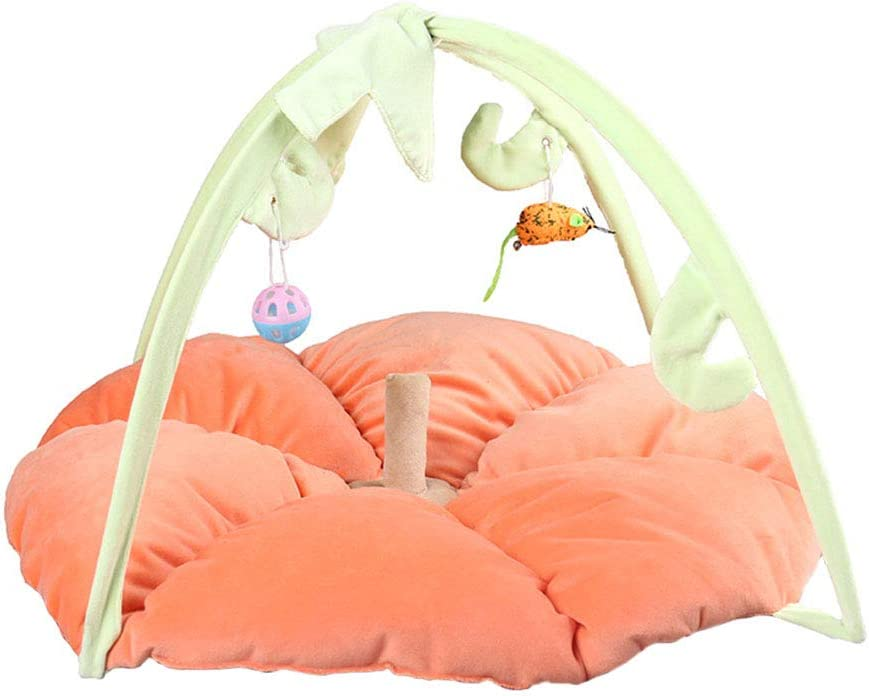 Scicalife Pet Tent with Manufacturer direct delivery Hanging Toys Cat Pumpkin Kitten Bed Ranking TOP19 Mat