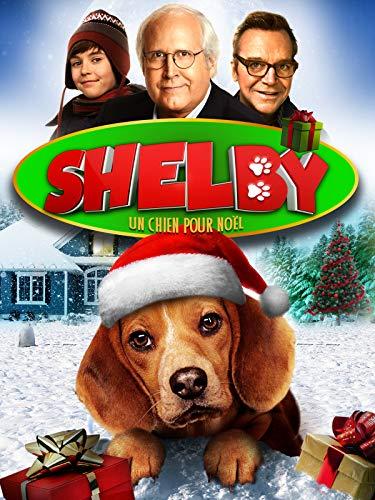 Shelby, un chien pour noël