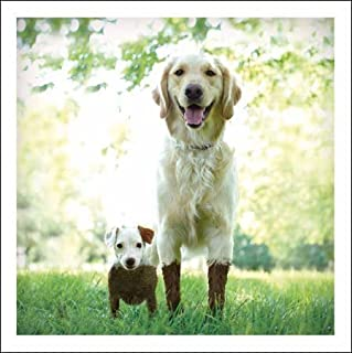 Mud & Muck The Dirty Duo Loose Leashes Greeting Card Blank Inside Any Occasion