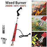 Electric Weed Burner 2000W, 3-in-1 Function Weeder, Weed Killer Thermal Weeding Stick, Up to 650℃, Garden Tools, 1.8M Cable, 2 Nozzles