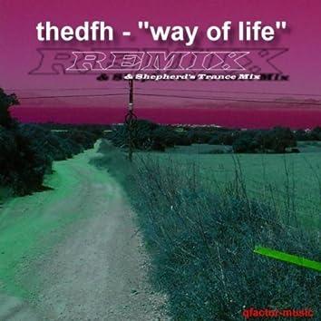 Way of Life - Remix