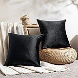Topfinel - Funda de cojín 50 x 50 cm, de terciopelo suave, para salón o dormitorio, juego de 2 fundas de cojín cuadradas de diseño negro liso, decoración para sofá moderno