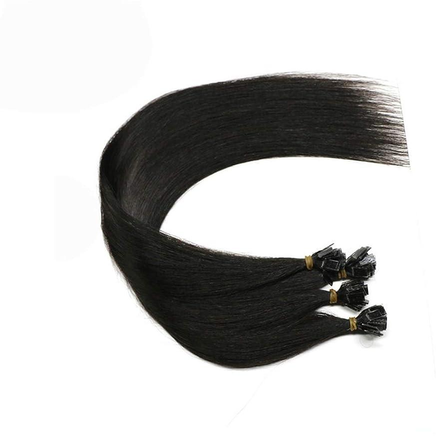 計画気付くサバントJULYTER ナノリング613ハニーブロンド最軽量の二重Raddled 100%人毛エクステンション (色 : 黒, サイズ : 20 inch)