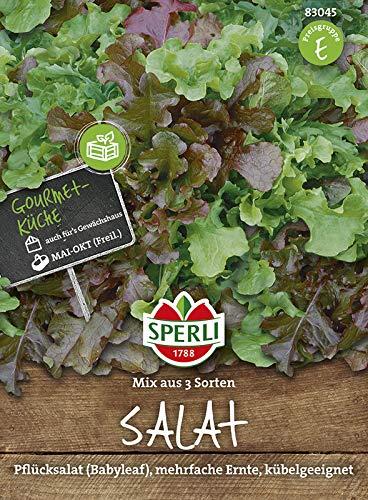 Sperli-Samen Salat-Mischung Veronas Mini - Mini (Baby Leaf)