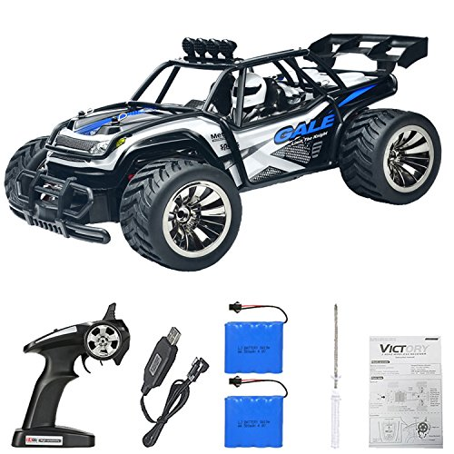 MRHESUS RC Buggy Monster High Car-Remote Control Car 1:16 2WD 2.4Ghz High Speed Radio Controlled Electric Car with 2 Rechargeable Batteries-Best Gift for Kids (Blue)