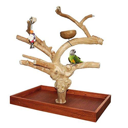 Wagner\'s ® | Java Tree Tischfreisitz aus Kaffeeholz für Großsittiche & Papageien