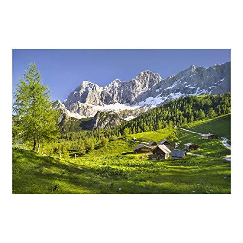 Vliestapete Steiermark Almwiese, HxB: 190cm x 288cm
