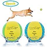 BINGPET Dog Water Toy Balls