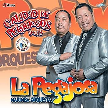 Calidad de Pegajosos Vol. 14. Música de Guatemala para los Latinos