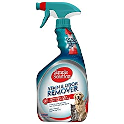 best pet stain carpet cleaner