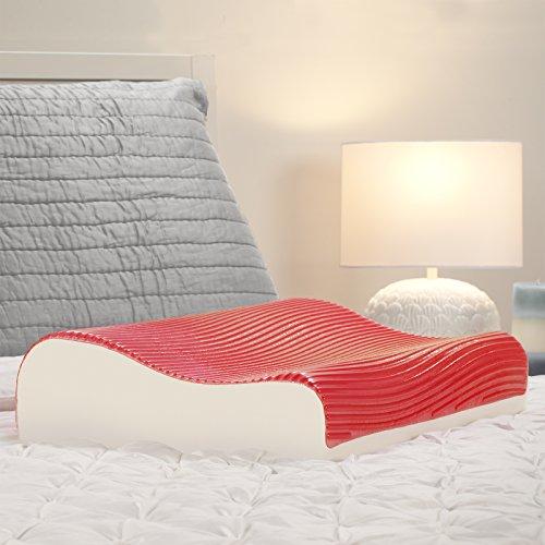 Sealy Memory Foam & Hydraluxe Gel Contour Pillow