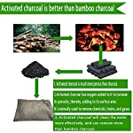 wyewye Activated Bamboo Charcoal Bags for Car Closet Shoe Home Basement 15Packs×100g 11 【GREAT VALUE PACK】Charcoal bags value pack provides 1.5kg of Activated charcoal. Each bag provides more absorbency than the standard 50g bags. Packed in a sealed linen bag with a ring on top for easy hanging on a hanger or hook. Sufficient size for cars, closets and other closed areas 【SUITABLE FOR FAMILIES】 Charcoal bags are made from environmentally friendly micro-porous activated bamboo charcoal, contains millions of tiny porous holes that can create a healthy atmosphere in your home. 【RECYCLABLE WITHOUT WASTE】These charcoal bags are reusable for 2 years! When this charcoal bag is saturated, in order to rejuvenate the bamboo charcoal bag, you need to place the charcoal bag outside in the sun once a month for at least two hours. You can reuse these charcoal bags without waste.