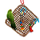 Borangs Bird Foraging Toys Parrot Seagrass Activity Wall Birds Toy for Cockatiel African G...