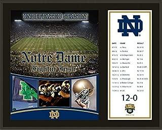 Notre Dame Fighting Irish 2012 Undefeated Season Sublimated 12