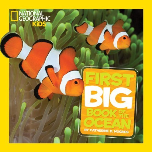 National Geographic Little Kids First Big Book of the Ocean (National Geographic Little Kids First Big Books) by Catherine D. Hughes (2013-10-08)