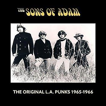 The Original L.A. Punks 1965-1966