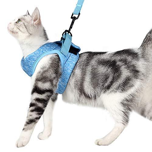 Set aus Katzengeschirr und Leine mit ultraleichtem Kätzchenhalsband weich und bequem Laufjacke Laufdämpfung entweichsicher geeignet für Kätzchen und Kaninchennachwuchs(M,Blue)
