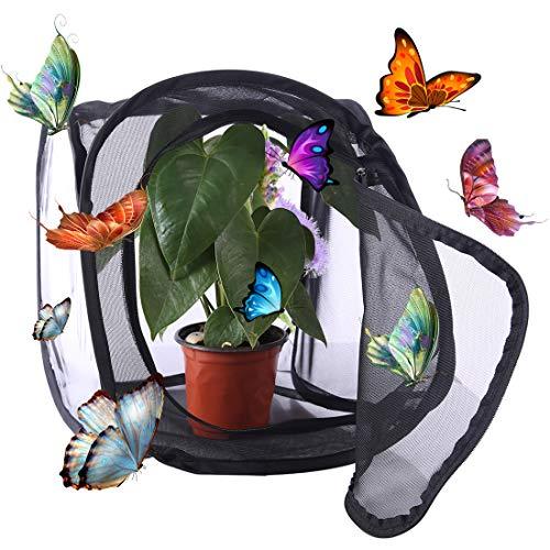 YVSoo Schmetterlinge Züchten Schmetterlingsgarten für Fang, Zucht Oder Beobachtete Schmetterlinge 30 x 30 x 30cm