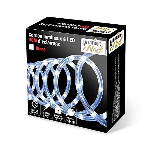 Guirlande Tube Lumineux 24 mètres Ampoules Led et 8 Jeux de Lumière - Coloris Blanc Froid
