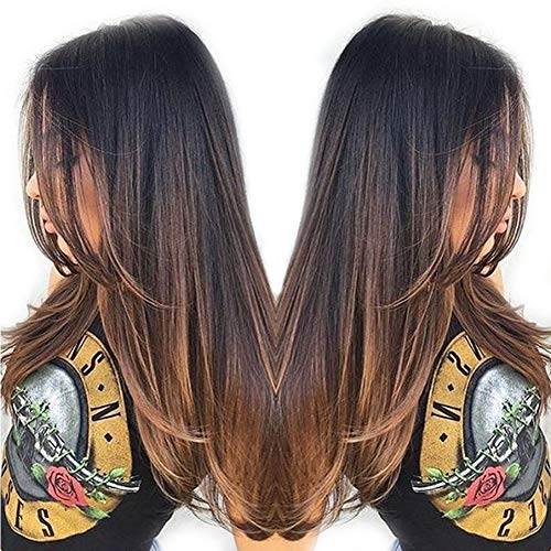 Glueless Brazilian Remy Human Hair Lace Front Wigs For Women Silky Straight Dark Root Two Tone Ombre Lace Wig 130% Density 16Inch
