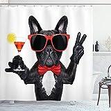 Funny cortina de ducha por Ambesonne, francés Bulldog Holding Martini cóctel listo para la fiesta vida nocturna Joy impresión, tela Set de decoración de baño con ganchos, negro rojo blanco