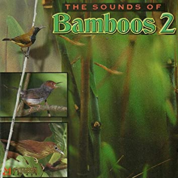 The Sounds of Bamboos, Vol. 2