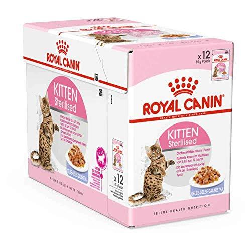 ROYAL CANIN - Sachets Kitten Sterilised en Gelée pour Chaton - 12x85g