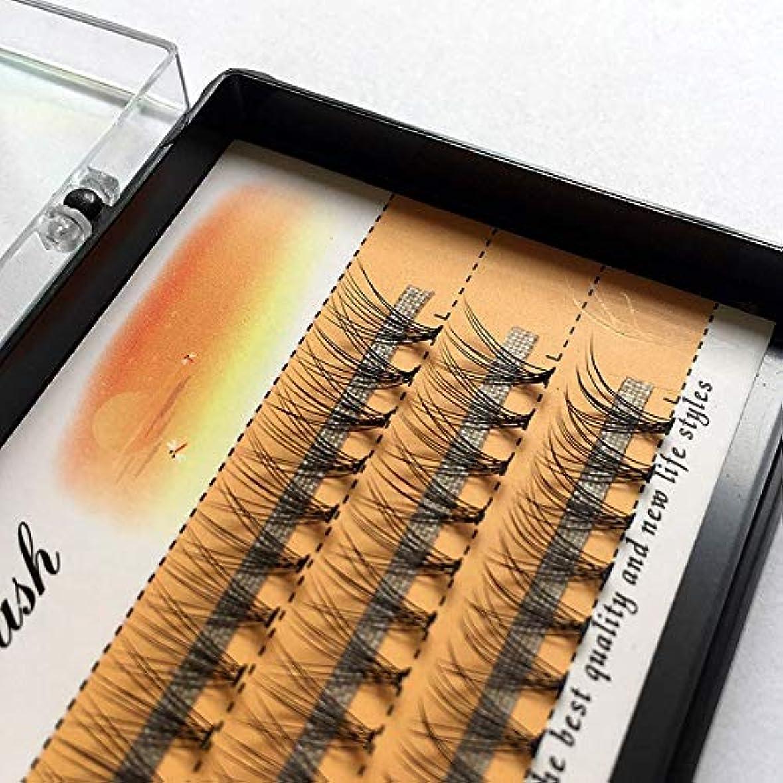 頭痛なだめる涙美容アクセサリー 3ボックスナチュラルロング個々フレアまつげクラスタつけまつげ60バンドル/ボックス(10mm) 写真美容アクセサリー (色 : 10mm)