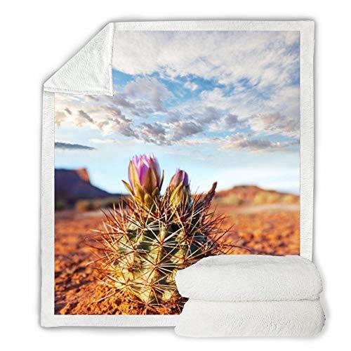 FDCSYP Dekbedovertrekset, zacht tweepersoonsbed, voor cactus, plant, hemel, landschap, digitale 3D-print, warm dekbed, winterpluche blad, sprei, voor volwassenen, kantoor, lunchpauze